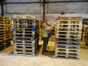 Our Staff producing high quality pallets